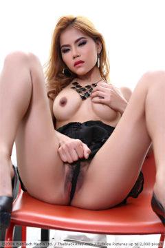Veevie pics Thai girl fucks her hairy pussy @ TheBlackAlley