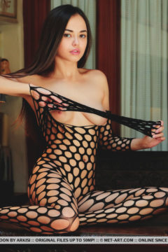 Beautiful exotic asian girl naked in fishnet pantyhose bodysuit Li Moon